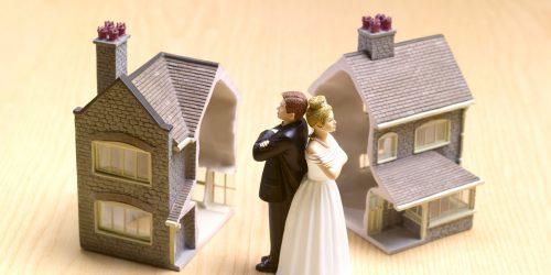 Имеем дом на двоих собственников могут ли расчитывать дети долю при разводе